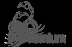 filmproduktion-hannover-ximpix-kunden